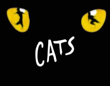 Cats au Théâtre Mogador