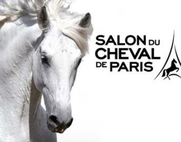 The Paris Horse Show