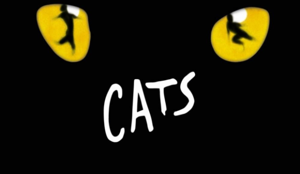 Cats at Mogador Theatre